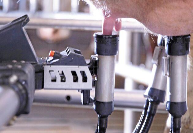 Kameran på VMS V300 detekterar och memorerar själv varje kos spenposition.