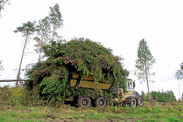 Att ta ut grenar och toppar vid en avverkning kan påverka tillväxten och ekonomin för skogsföretagare. Ett nytt webbverktyg som Skogforsk utvecklat hjälper till att räkna på lönsamheten.