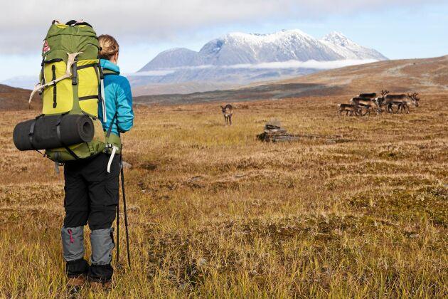 Ett smart tips! Kikare bra även för icke-fågelskådare för att kunna studera terrängen på långt håll.