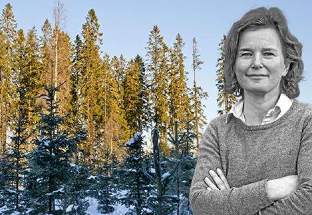 Bättre med en aktiv skogsägare än att alla ägare haft samma efternamn, skriver ATL:s krönikör Birgitta Sennerdal.