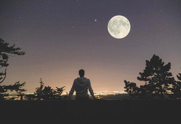 Då infaller fullmåne år 2020 – månad för månad.