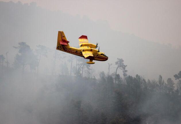 Om landningsbanan tas bort så oroar sig skogsbolagen för att så kallade vattenbombare inte kommer kunna komma och hjälpa till vid skogsbränder. Arkivbild.