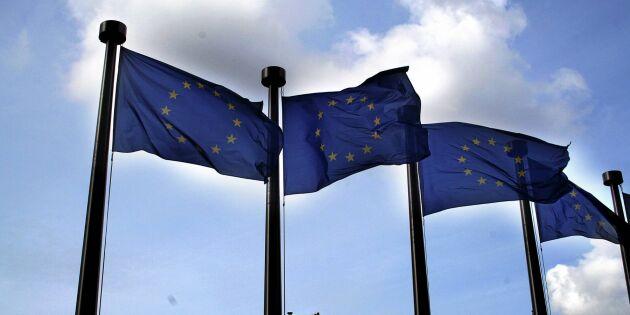 Så vill Sverige styra upp EUs jordbrukspolitik