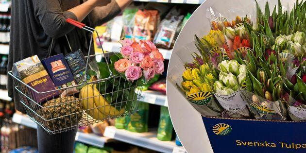 Välj miljösmart blomster i butiken: Så känner du igen det svenskodlade!