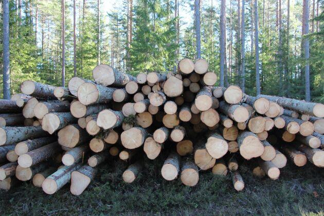 Priset på sågtimmer föll under andra kvartalet, enligt statistik från Skogsstyrelsen.