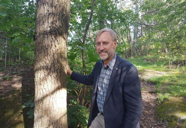 Jag förväntar mig att skogsutredningen levererar, skriver Paul Christensson.