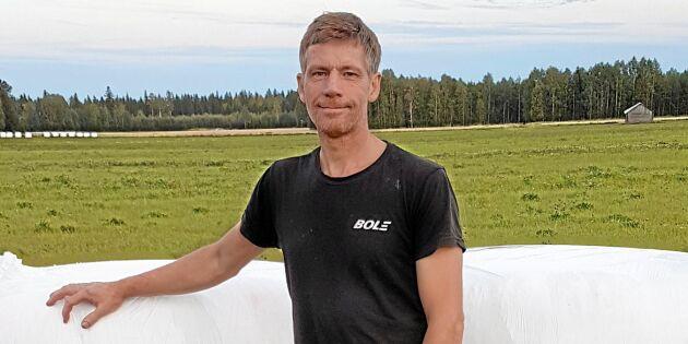 Bra andra skörd i Norrbotten