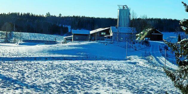 Frostig dag på Kilhammar gård