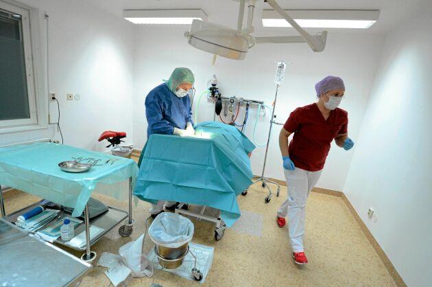 TOPPMODERN. Andreas och Emelie i sin modernt utrustade djurklinik, bland annat med en avancerad skiktröntgen - den enda norr om Sundsvall.