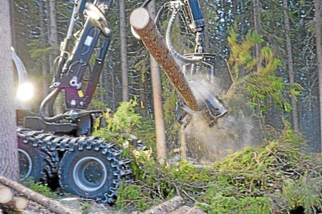 Dags att fundera på när virkeslikviden ska slutredovisas och uttag från skogskontot ska göras.
