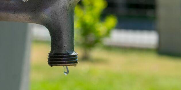 Rekordlågt grundvatten – krisläge på många håll