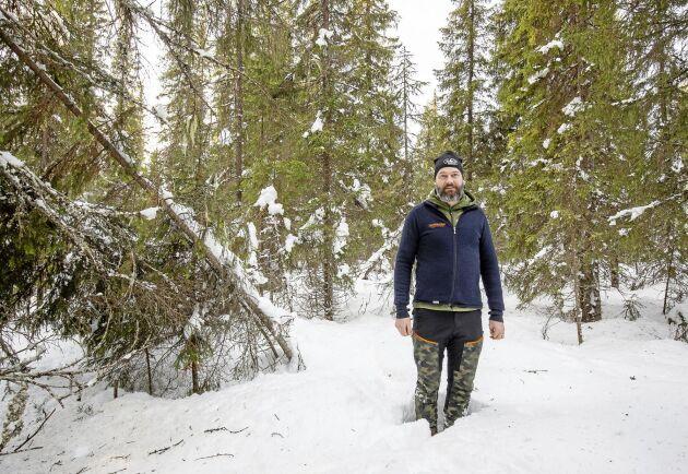 Magnus Olofsson visar resultatet i skogen efter blädning i Trekilen där de tre jaktintresserade ägarna ville behålla skogskänslan. En liten lucka har huggits ut jämte stickvägen.