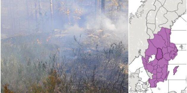 Stor risk för gräsbränder – skogsägare varnas