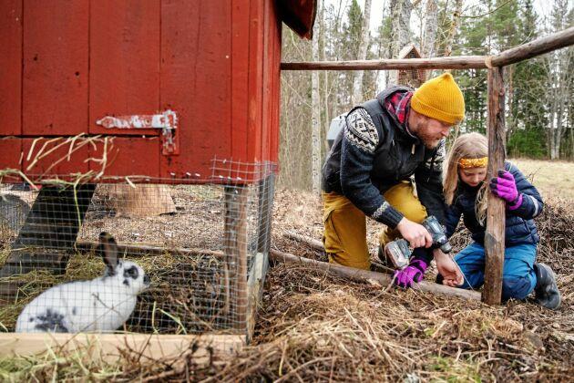 Christofer och Greta bygger vidare på kaninernas utomhus på gården.