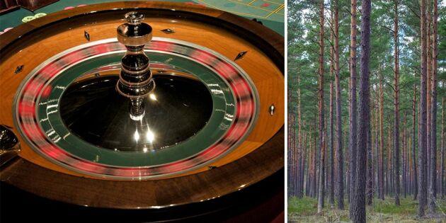 """""""LRF spelar roulett med skogsägarnas framtida avsättning"""""""