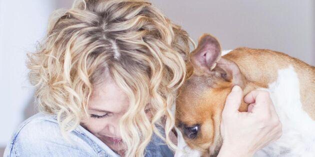 10 tecken på att du är en äkta hundnörd