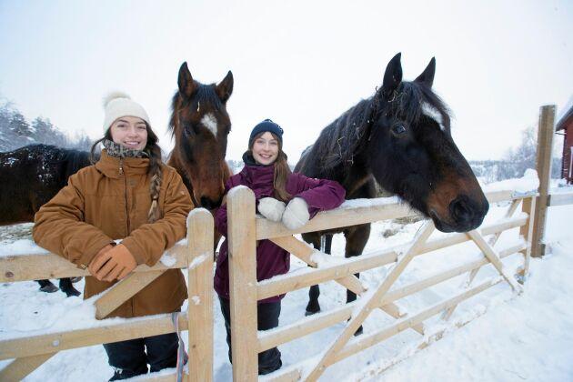 Rebecca och Nadjas hjärtan klappar inte bara för utförsåkning utan också för gårdens hästar.