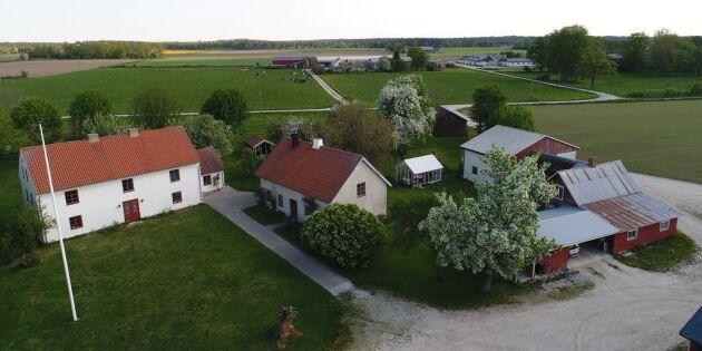 Gård i full produktion till salu på Gotland