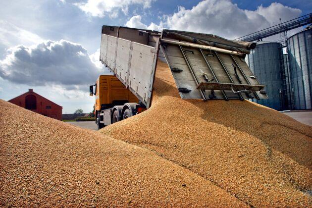 Per Gerhardsson på Lantmännen råder lantbrukare att följa marknaden noga eftersom stora prisrörelser kan vara på gång.