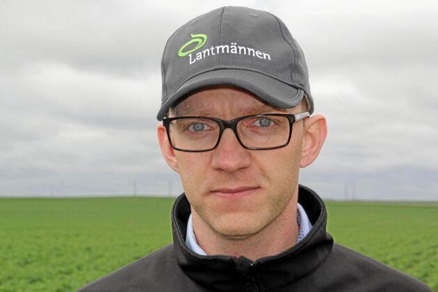 Johannes Åkerblom, växtodlingschef på Lantmännen, ser en ökad försäljning av vårrapsutsäde i år som pekar mot en något större areal i år.