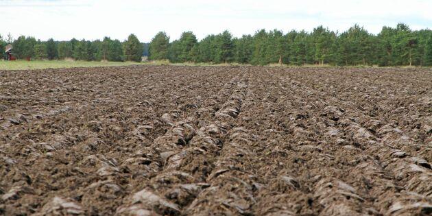 Sverige trea i EU-klassen för ekomark