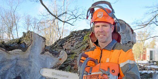 Den finns en marknad för svenskt lövträ