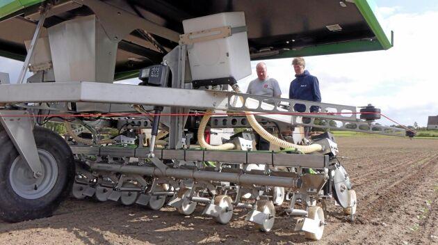 Kristian Warming och Benjamin Christensen (till vänster) kollar hur roboten Farmdroid klarar av att rensa ogräs i höstraps på Pollerups Hovgård utanför Stege på Mön i södra Danmark.