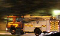 60-tal kor innebrända i ladugårdsbrand
