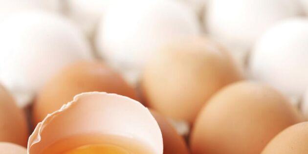 Exakt så här vill svensken ha sitt ägg