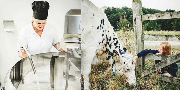Cecilia gör som mormor och startar eget mejeri