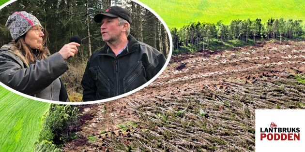 Skogsägarnas sår – 15 år efter stormen Gudrun