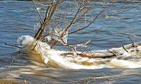 SMHI varnar för extremt höga vattenflöden