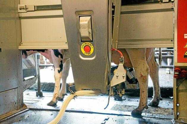 En mjölkrobot kostar runt en miljon kronor att köpa - och den stora kapitalinsatsen som krävs för att ta över en gård är en av anledningarna till att ett särskilt stöd riktat till unga företagare behövs, menar artikelförfattarna.