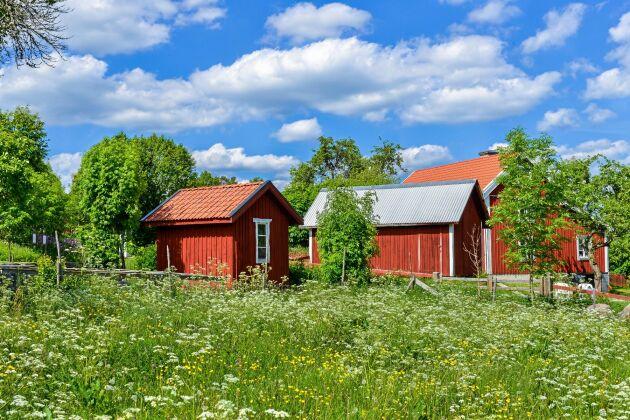 Filmen om barnen i Bullerbyn är inspelad i Sevedstorp där Astrid Lindgrens fars barndomshem fanns.