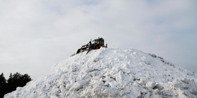 Umeå kan ha landets högsta snöhög – över 20 meter
