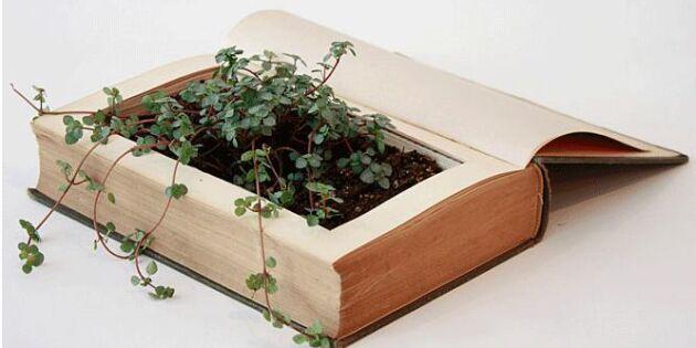 Plantera i en gammal bok