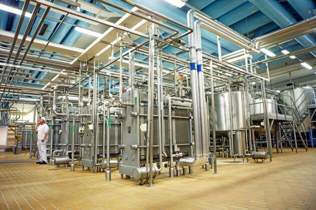 I år går 15 procent av Skånemejeriers totala mjölkinvägning till kvargtillverkningen.
