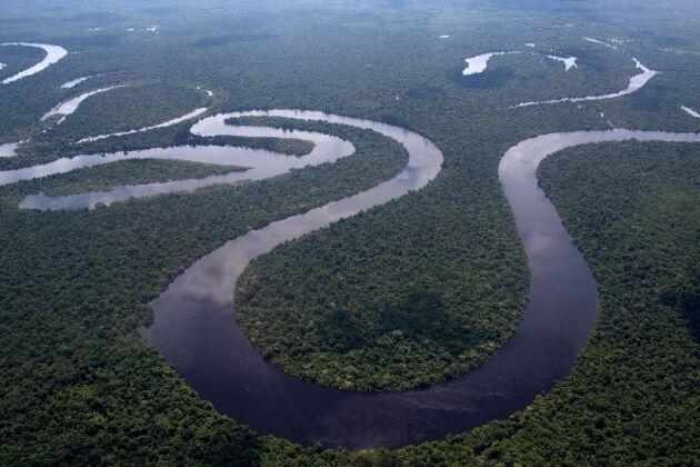 Skövlingen av regnskogen i brasilianska Amazonas ökar (arkivbild).