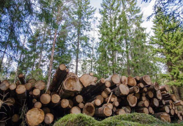 Genom att dela marknadspriset för en skogsfastighet med avkastningsvärdet får Skogssällskapets fram sitt Skogsindex. Ett lågt index innebär mycket skog för pengarna, ett högt index att köparen betalar för annat än virkesvärdet.