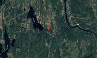 Nya ägare till skogsfastigheter i Dalarna
