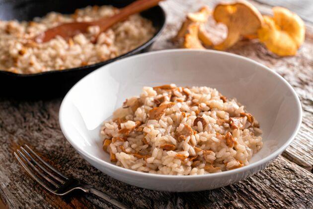 Kantarellrisotto passar till fågel, fisk, vilt och vegetariska biffar – eller som ensamrätt.
