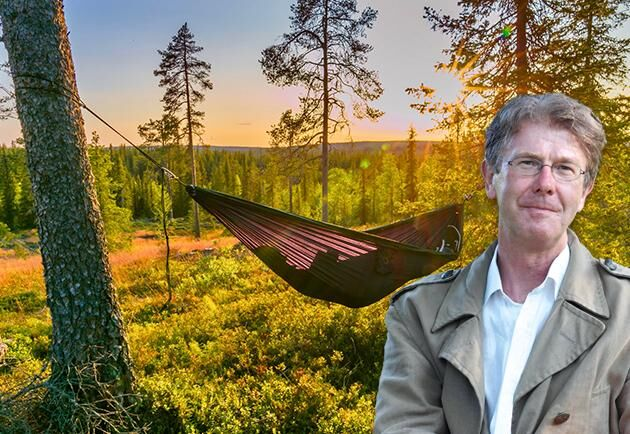 """""""I flera av landets kommuner är minst vart femte arbetstillfälle kopplat till skogsbruket"""", skriver Per Fornling i sin ledare."""