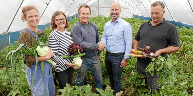 Olle på Torfolk gård lånar ut sin mark – för att fler ska bli bönder