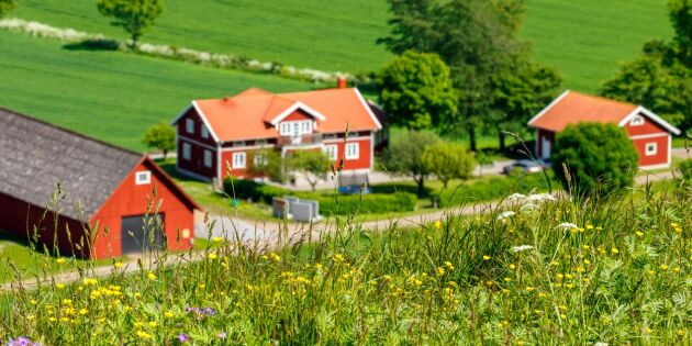 Nu blir det enklare att hyra ut hus för lantbrukare