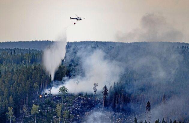 Efter förra sommarens många och svåra skogsbränder har MSB, Myndigheten för samhällsskydd och beredskap, kallat in två extra helikoptrar i år.