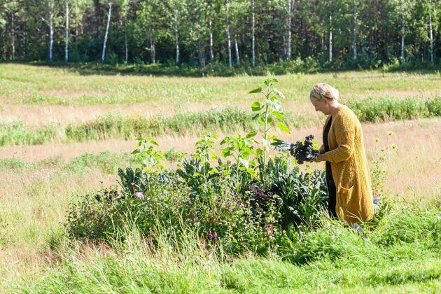 Livet i glesbygden. lugnet och närheten till naturen ger mening i tillvaron tycker Maria.