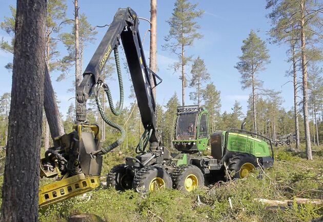 I augusti tog avverkningsanmälningarna fart rejält i Svealand.