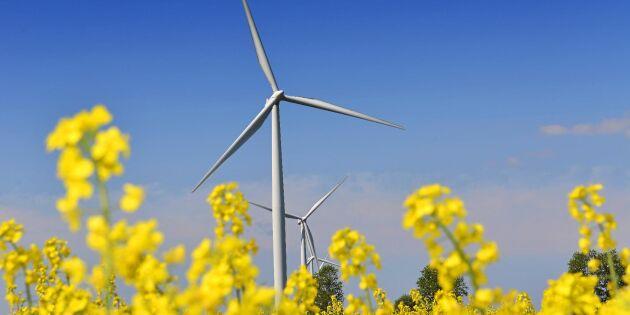 Vad vet du om hållbarhet? Testa dina kunskaper i Grönt Väders quiz!