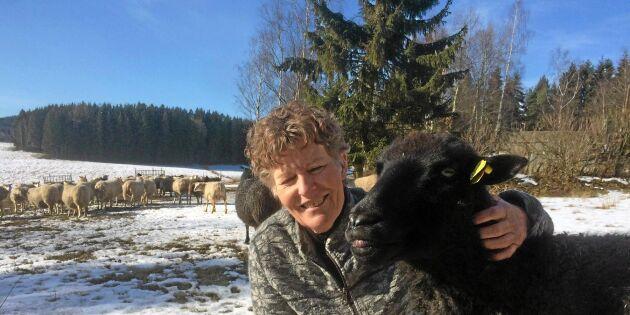 Nu koras Sveriges smartaste djurstall