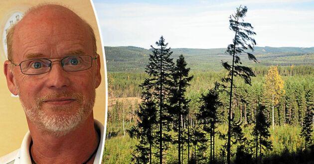 Utsikt över skog och mark från naturreservatet Hykjeberget i vackra Älvdalen som hyllas av Björn Rehnström.